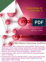 Kimia Bab Tata Nama Senyawa Dan Reaksi Kimia (Erlanda)