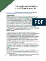 Contaminación Ambiental Por Ladrillos Artesanales en El Departamento de Puno