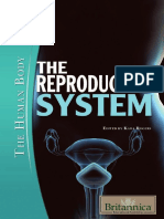 Kara Rogers the Reproductive System[1]