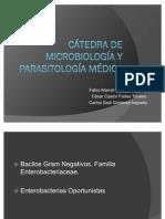 Cátedra de Microbiología y Parasitología Médica