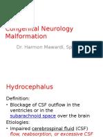 Harmon Mawardi. Congenital Neurology Malformation