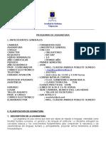 Programa Linguistica 2009