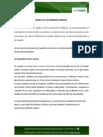 25112015_052743_NOTIFISO - Los Beneficios de La Música en El Ambiente Laboral