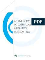Overview to Cash Flow & Liquidity Forecasting