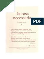la rosa necessaria n. 09
