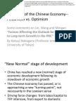 Slowdown of the Chinese Economy-Pessimism vs. Optimism