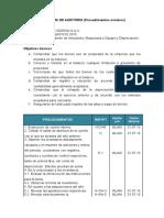 Programa de Auditoria.docx