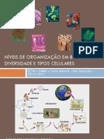 Niveis de Organizacao Biologica