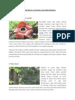 5 Tumbuhan Dan Hewan Langka Di Indonesia