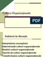 Cultura Organizaţională Fin