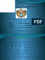 Contaminacion Ambiental de Mina Cobriza