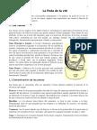 10.La Poda de la vid.doc