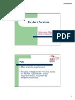 22-Feridas e curativos-1-1.pdf