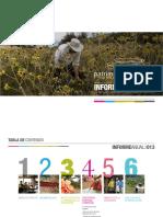 InformeFinal Fondo Patrimonio 2013