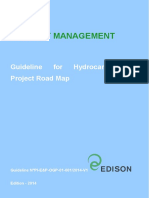 Guideline for Hydrocarbons Project Road Map_REV0