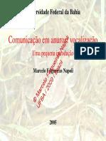 Minicurso Historia Natural MFNapoli 2008-03-3