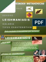 zonas de enfermedades.pdf
