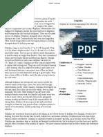 Fish type Dolphin.pdf