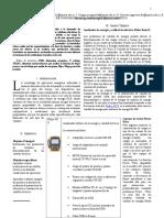 Informe Calefon IEEE