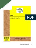 Renstra 2013.pdf