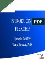 2 - Introducing Flexchip Uppsala 060309