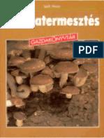 9377919-Szili-Istvan-Gombatermesztes.pdf