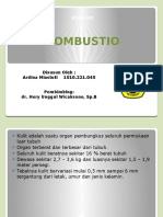 PPT - Combustio