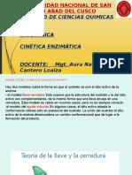 DIAPOSITIVAS CINETIC ENZ-ELY.pptx