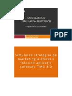 Model Raport de Activitate Simulare TMG MSA 2016dasdasdsadas