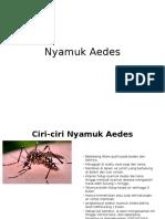 Nyamuk Aedes.pptx