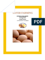 Layer Chicken Farming