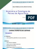 Anatomia e Fisiologia de Peixes