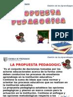 PROPUESTA PEDAGOGICA 1