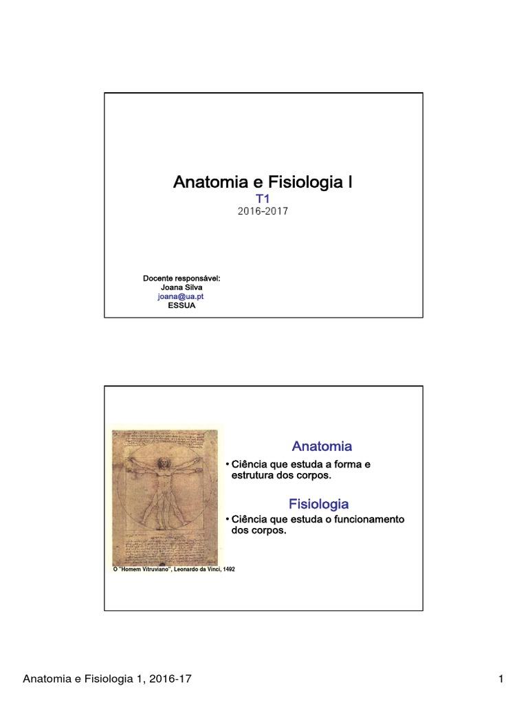 1617_AF1_T1.pdf