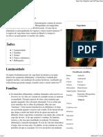 Vaga-lume – Wikipédia, A Enciclopédia Livre
