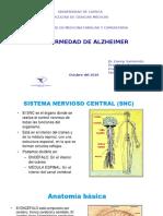 Alzheimer Cristo Rey