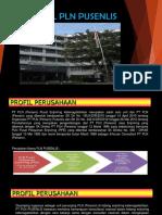 1. Profil PLN Pusenlis