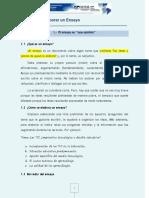 -Pautas para elaborar un Ensayo.pdf
