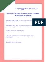 AÑO DE LA CONSOLIDACION DEL MAR DE GRAU.docx terminado.docx