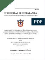 Carbajal Lopez Alberto
