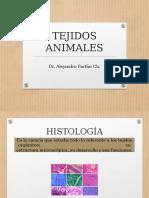 Clase 12 Tejidos Animales