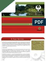 Area Natural Protegida El Tejar Garnica