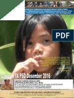 Monthly Individual Report P3MD - Stephanus Mulyadi - TA PSD Kapuas Hulu Desember 2016