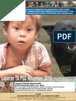 Monthly Individual Report P3MD - Stephanus Mulyadi - TA PSD Kapuas Hulu Nopember 2016