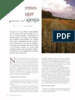 ajenjo.pdf