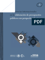 International Experiences in Elaborating Public Budgets With a Gender Perspective
