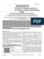 Butterfly Diversity in Agroecosystem of Arjuni/Morgaon Taluka, Gondia, Maharashtra, India