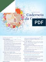 Cartilha Gestante.pdf