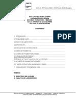 10-Estudio-Pavimentos-Pista-.doc