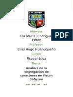 Análisis de la segregación de caracteres en Pisum Sativum.docx
